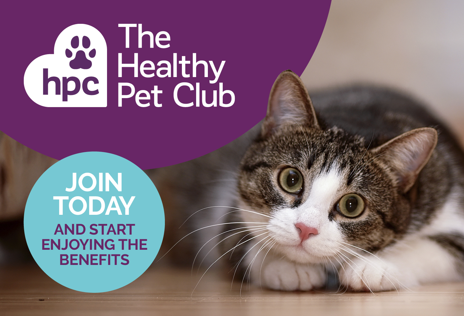 Join The Healthy Pet Club Today
